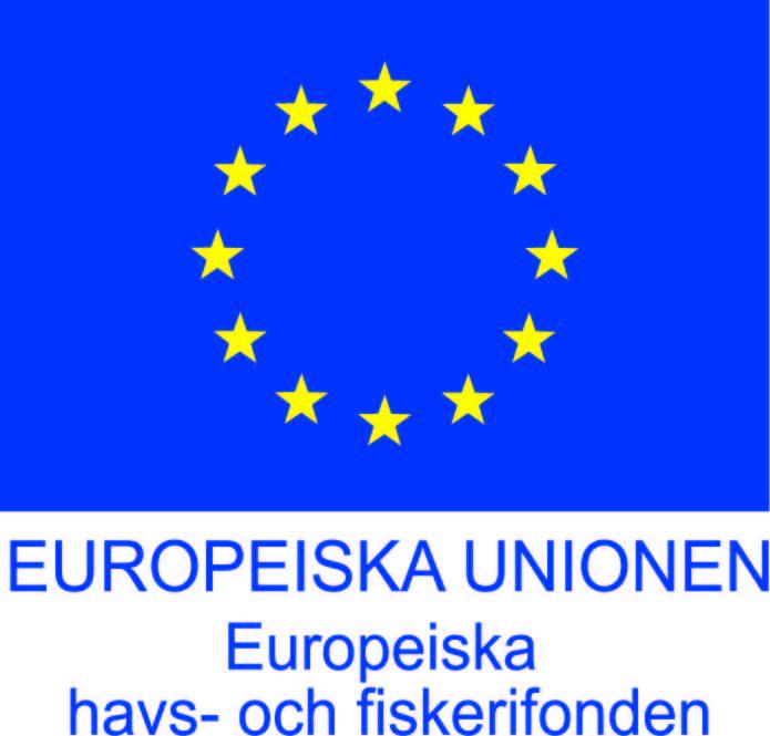 EHFF_flag_HavsFisk